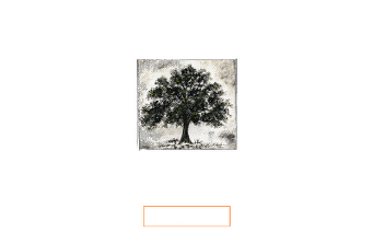 Official Selection - Cordoba International Film Festival - 2016